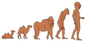 Kamelaffe