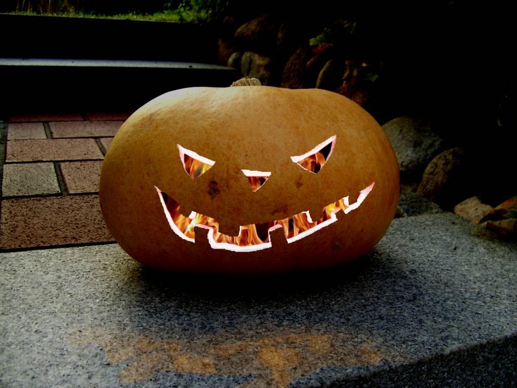 Hällo Wien … ähh … Halloween Halloween-Kürbis
