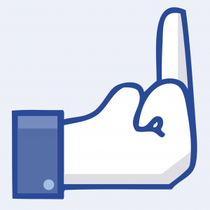 Facebook Fakebook Steal klauen Fuck Artist Button-02