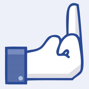 "Facebook Einführung des ""Fuck Artist"" Button verzögert sich Facebook Fakebook Steal klauen Fuck Artist Button-03"