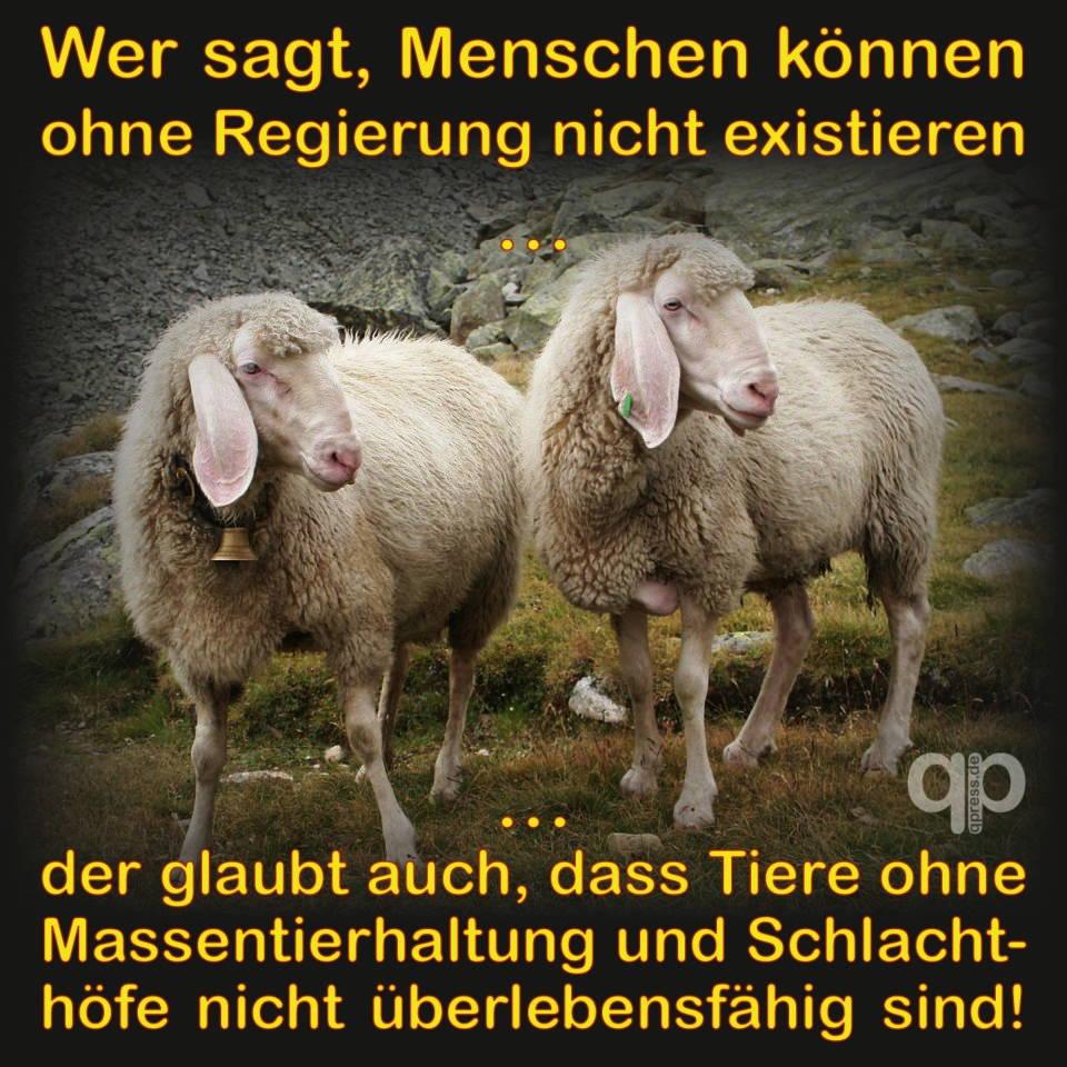 Bargeldhortung, EZB und Regierungen verlieren das Vertrauen in die Bürger Schafe die glauben menschen oennten nicht ohne Regierung existieren