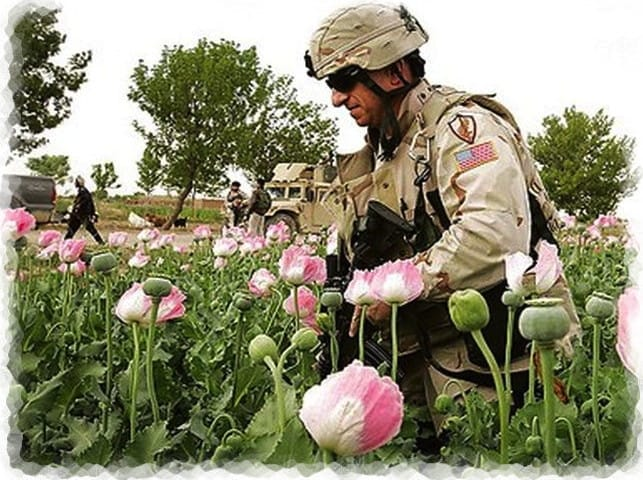 Spenden afghanischer Drogenbarone für deutsche Flutopfer cia_drogen_anbau_bundeswehr_schutz_mohnfelder_afghanistan