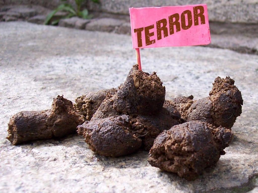 "UNESCO will ""Terror"" zum geistigen Weltkulturerbe erheben Terror Scheisse Bullshit Nervkram Falseflag Verarschung"