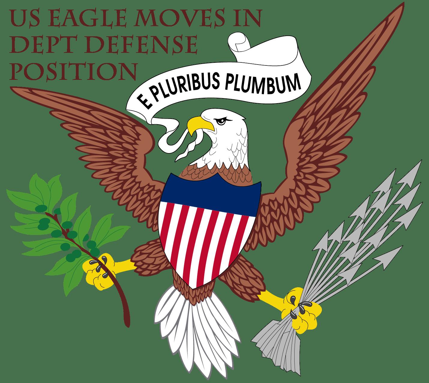 American Eagle kampf Adler solo Pleitegeier bankrott vogel