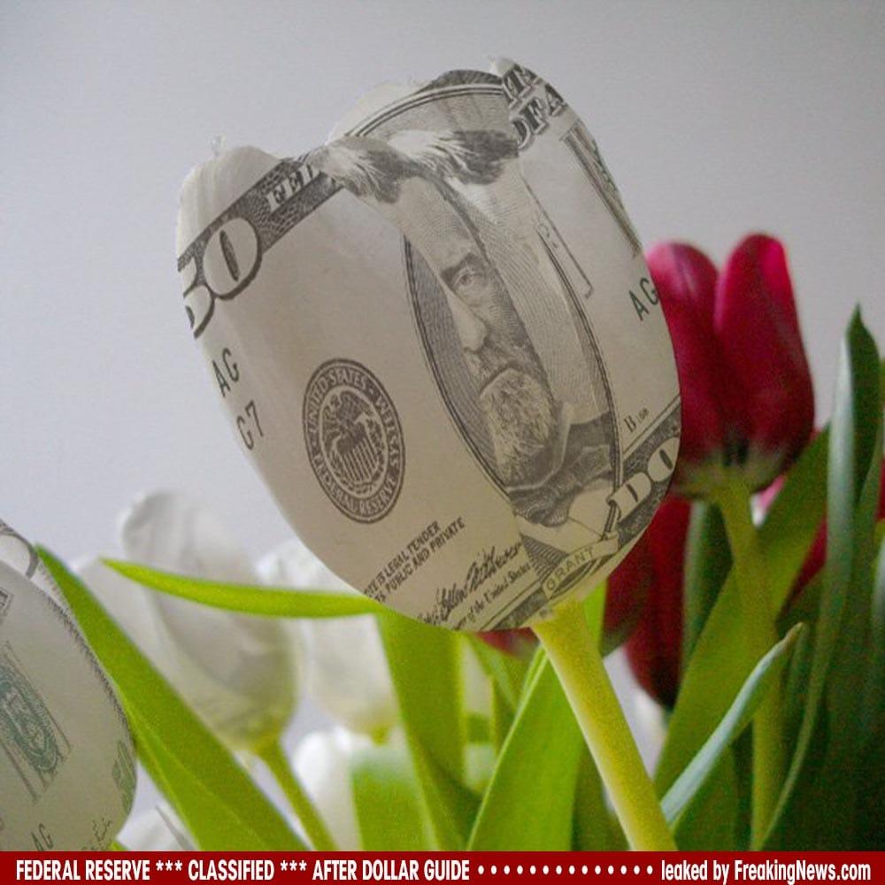 Geheimdokumente der Federal Reserve zur Nach Dollar Ära geleakt Dollar-Money-Tulip-tulpe-blueten-falschgeld-fake