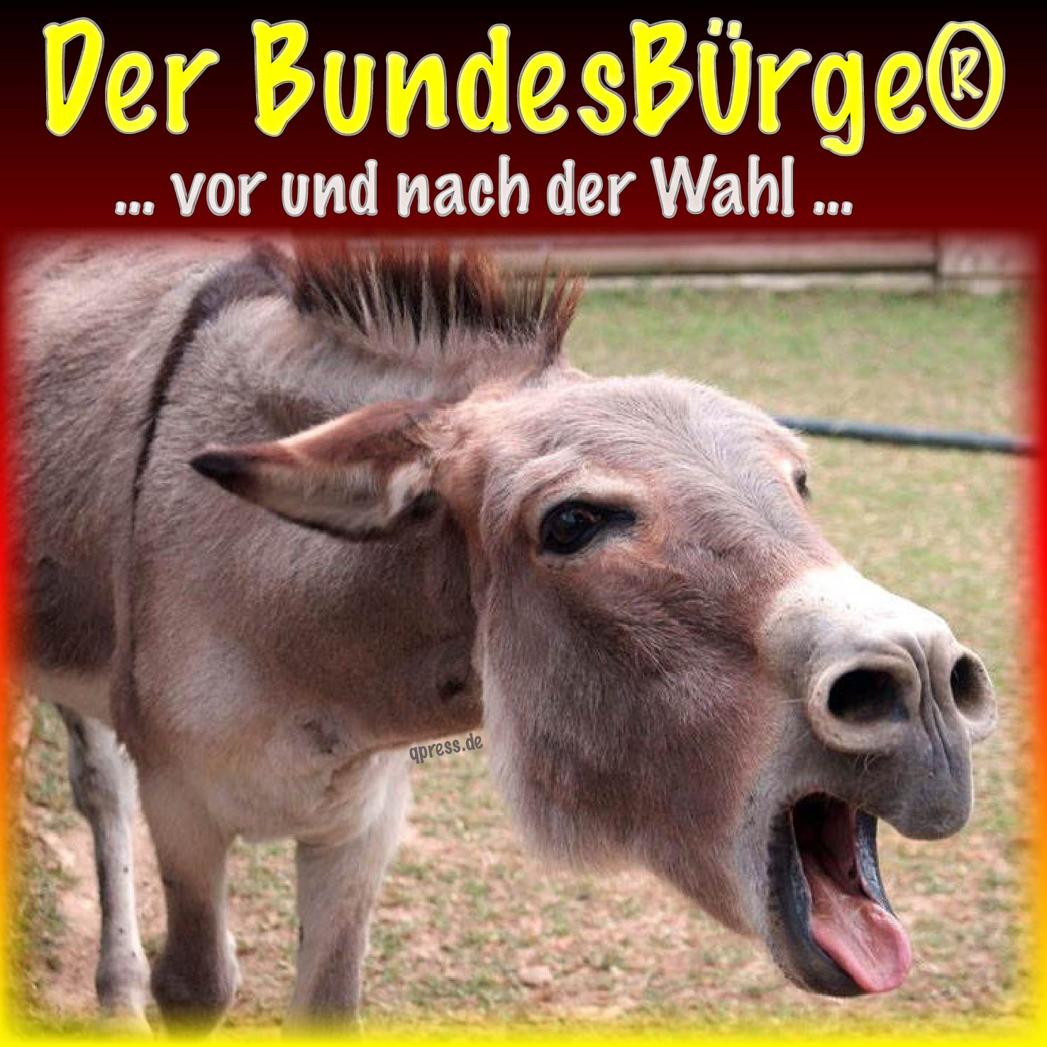 Krisensitzung Merkel-Junta verliert endgültig das Vertrauen ins Volk Der Bundesbuerger vor und nach der Wahl Esel der Nation qpress