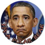Obama setzt auf Militär und Überlegenheit beim Kampf gegen Klimawandel United States Polar Bear petition for free alaska russia speech barack hussein obama autonom release independent qpress
