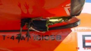 Bildschirmfoto Alugeschosse gegen voegel gefluegel unterschallgeschosse