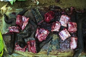 US-Patent auf biblische Plage, Ebola elaboriert Buschfleisch bushmeat affenfleisch afrika wildfleisch allesfresser ebola virus uebertragung