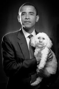 Barack-hussein-obama-merkel-bulldog-german-war-poodle-hells-angela-Kampfhund