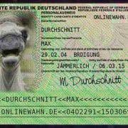 Gesetzliches Reiseverbot für deutsche Politiker