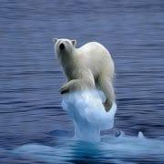Prima Klima-Katastrophe, Glaubensgrundsätze der Klimareligion versinken im Meer der Zweifel