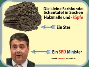 Fachkunde Holzmaße Ster Minister Gabriel SPD Verrat EU Europa-01