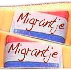 Migration ist in jeder Phase eine Bereicherung
