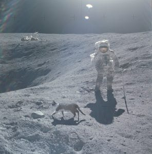 Beweismaterial zur Mondlandung Sonne Mond und Katze Mondlandung Hoax USA Fake NASA NSA Beweismittelvernichtung