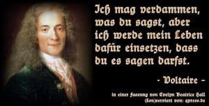 Voltaire - Ich mag verdammen, was du sagst, aber ich werde mein Leben dafuer einsetzen, dass du es sagen darfst
