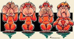 """""""Wir befürchten, dass die Affen aggressiv werden"""""""