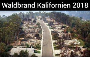 Natur erprobt neue Waldbrand-Konzepte in USA
