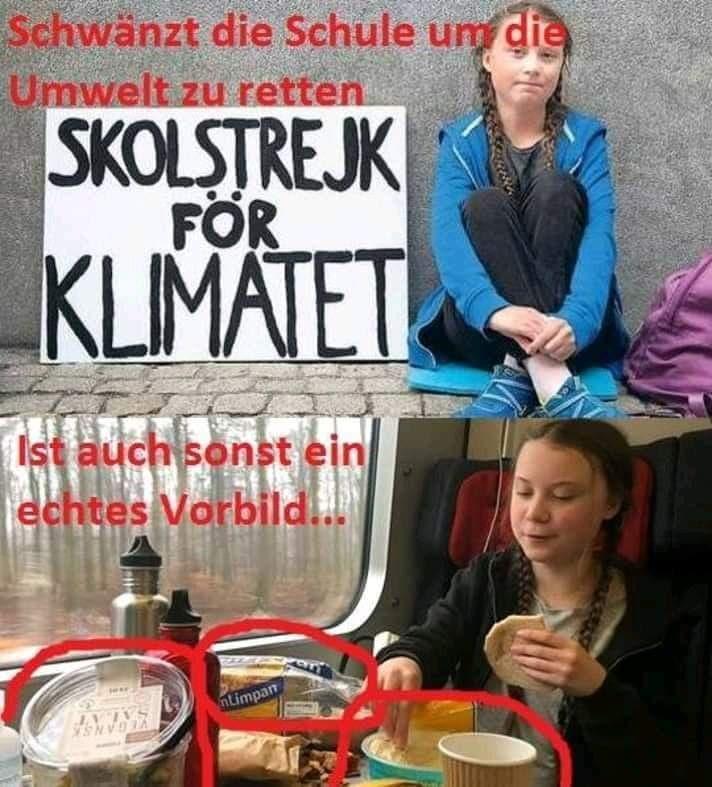 Die Wahre Greta Thunberg Und Der Plastikkonsum Qpress